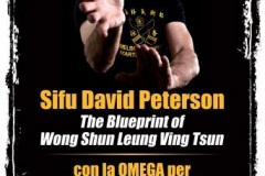 sifu-david-peterson-wslvt-seminar-in-rome-nov-2013-01