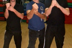 sifu-david-peterson-wslvt-seminar-in-rome-nov-2013-06