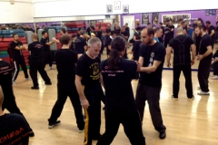sifu-david-peterson-wslvt-seminar-in-rome-nov-2013-12