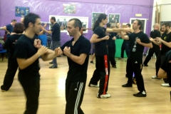 sifu-david-peterson-wslvt-seminar-in-rome-nov-2013-14