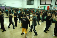 sifu-david-peterson-wslvt-seminar-in-rome-nov-2013-21