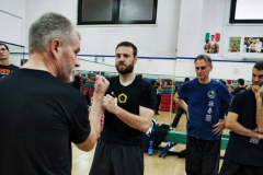 sifu-david-peterson-wslvt-seminar-in-rome-nov-2013-26