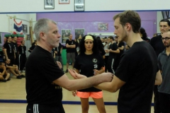 sifu-david-peterson-wslvt-seminar-in-rome-oct-2014-07