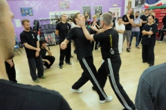 sifu-david-peterson-wslvt-seminar-in-rome-oct-2014-11