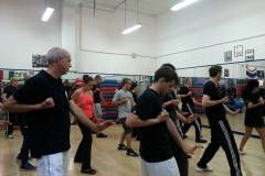 sifu-david-peterson-wslvt-seminar-in-rome-oct-2014-15