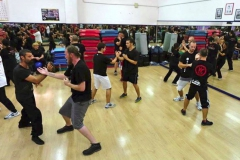 sifu-david-peterson-wslvt-seminar-in-rome-oct-2014-23