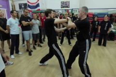 sifu-david-peterson-wslvt-seminar-in-rome-oct-2014-27