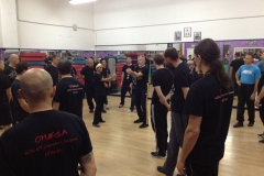 sifu-david-peterson-wslvt-seminar-in-rome-nov-2013-09