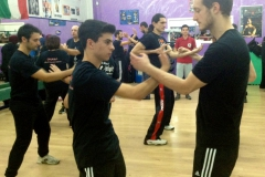 sifu-david-peterson-wslvt-seminar-in-rome-nov-2013-13