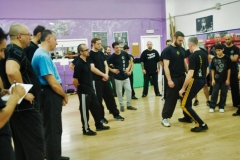 sifu-david-peterson-wslvt-seminar-in-rome-nov-2013-17