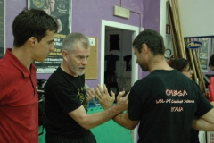 sifu-david-peterson-wslvt-seminar-in-rome-nov-2013-20