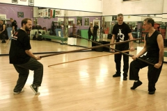 sifu-david-peterson-wslvt-seminar-in-rome-nov-2013-24