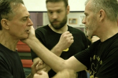 sifu-david-peterson-wslvt-seminar-in-rome-nov-2013-28