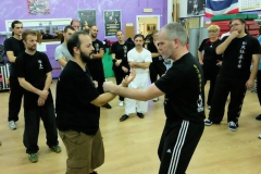 sifu-david-peterson-wslvt-seminar-in-rome-oct-2014-14