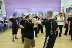 sifu-david-peterson-wslvt-seminar-in-rome-oct-2014-18