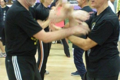 sifu-david-peterson-wslvt-seminar-in-rome-oct-2014-19