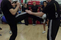 sifu-david-peterson-wslvt-seminar-in-rome-oct-2014-26