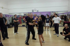 sifu-david-peterson-wslvt-seminar-in-rome-oct-2014-29